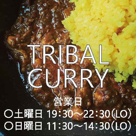 tribalcurry.